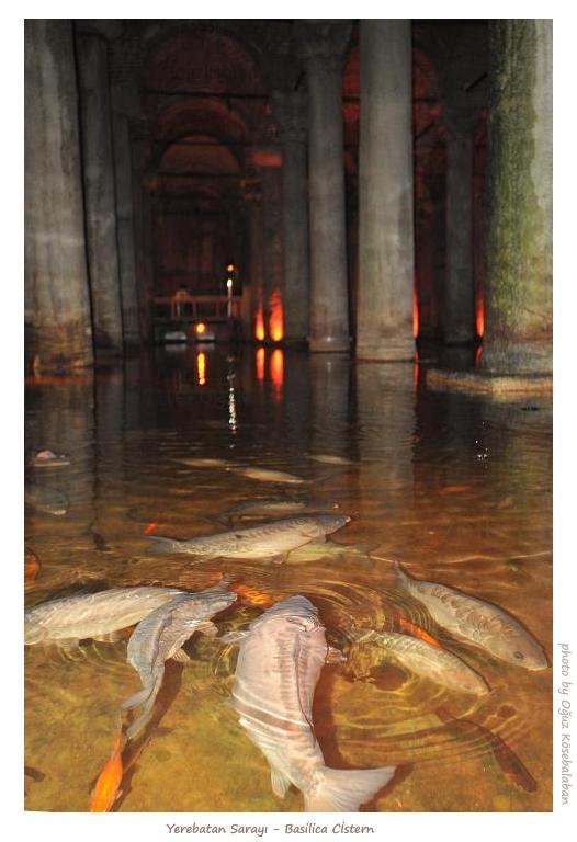 istanbul_Basilica_Cistern