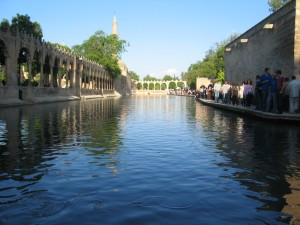 sanliurfa-Halilur-Rahman-Mosque-in-Urfa-Turkey-pool